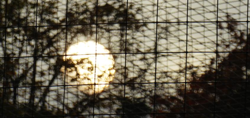Sonnenvergleich